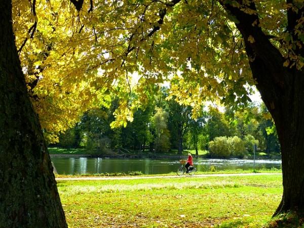 Moda otoño Primavera Verano para la mujer Jerseys y Sudaderas 2015-2016